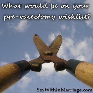 What would be on your prevasectomy wishlist