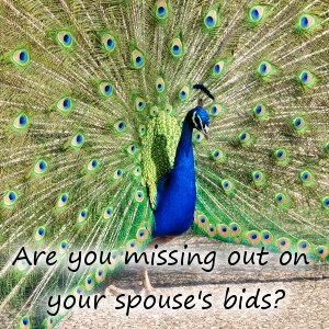 are-you-missing-out-on-your-spouses-bids-300